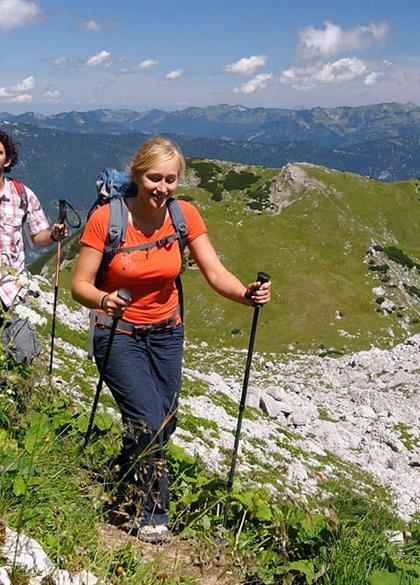 Wanderer im steinernen Gebirge