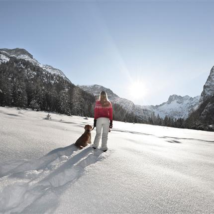 Spaziergang mit Hund in den Bergen